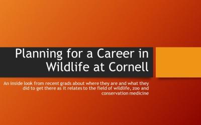 Intro slide for wildlife career panel