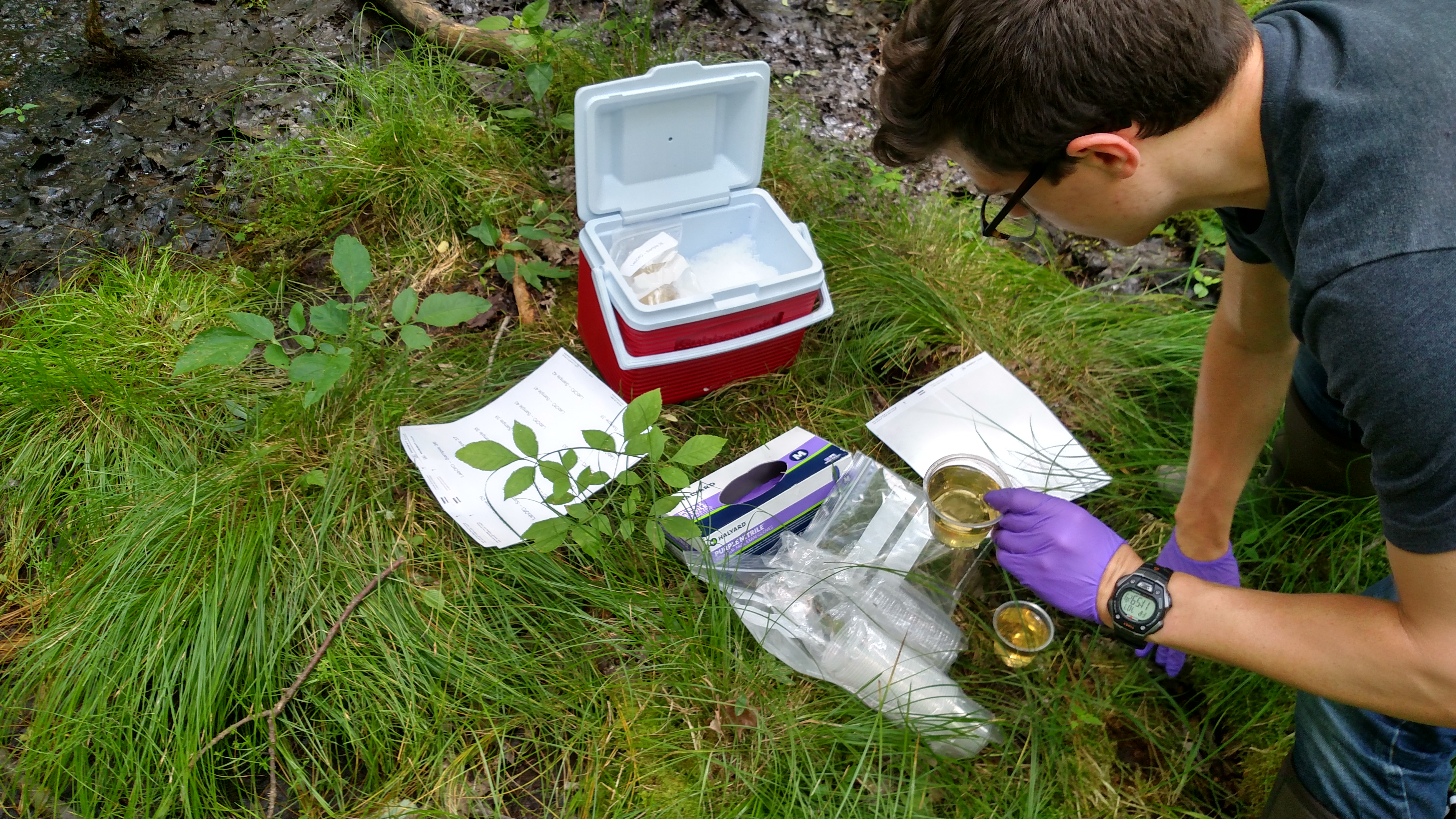 Cataloging samples in the field