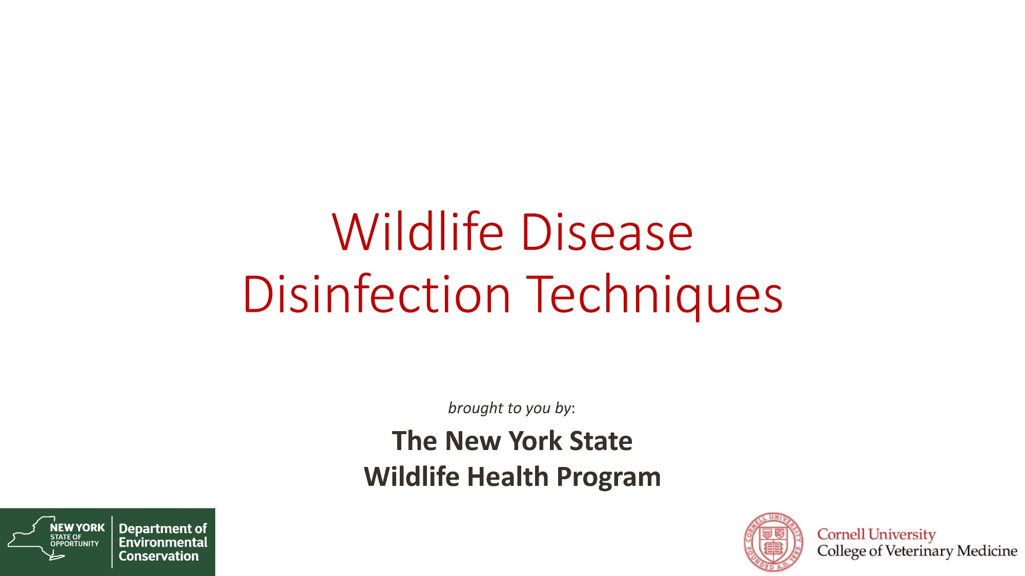 Video of Disinfection Techniques 2017