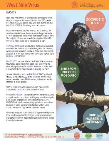 West Nile Virus Disease Fact Sheet Cover Image