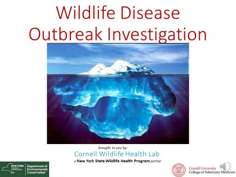 Wildlife Disease Outbreak Investigation title image