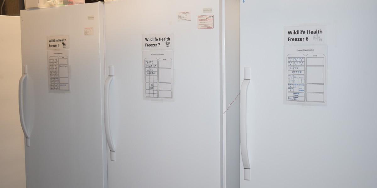 Small bank of wildlife health freezers