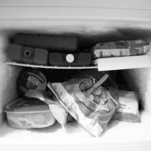 inside the freezer